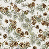 Seamless pattern with pine cones. Realistic look. Royalty Free Stock Photography