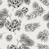 Seamless pattern with pine cones. Realistic look. Stock Photos