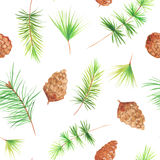 Seamless pattern with pine cones. Seamless pattern with watercolor pine cones and branches. Hand painted green coniferous twig and pinecone. Decorative Royalty Free Stock Photo