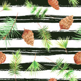 Seamless pattern with pine cones. Seamless pattern with watercolor pine cones and branches. Hand painted green coniferous twig and pinecone. Decorative Royalty Free Stock Image