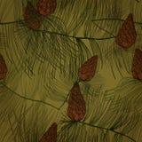 Seamless pattern with pine tree. Seamless hand drawn pattern with pine tree branches and cones. Eps10 Stock Image