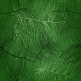 Seamless pattern with pine tree Stock Photography