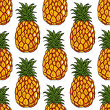 Seamless pattern of pineapples fruits Stock Photos