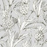 Seamless pattern with pineapples and leaves. Tropical summer graphic illustration. Botanical texture in beige shades. Monochrome nature design. Can be used for royalty free illustration