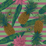 Seamless pattern with pineapples, lotuses, peacock feathers on stripes. Vector. Seamless pattern with pineapples, lotuses, peacock feathers. Vector Hand drawn Stock Photos
