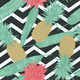 Seamless pattern with pineapples, lotuses on zig-zags. Vector. Seamless pattern with pineapples, lotuses. Vector Hand drawn Stock Images