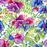 Seamless pattern with pink, blue Sweet pea, Lathyrus odoratus, l Royalty Free Stock Photos