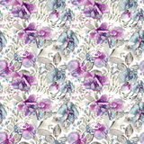 Seamless pattern with pink, blue Sweet pea, Lathyrus odoratus, l Stock Images