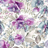 Seamless pattern with pink, blue Sweet pea, Lathyrus odoratus, l Royalty Free Stock Image
