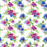 Seamless pattern with pink, blue Sweet pea, Lathyrus odoratus Stock Photography