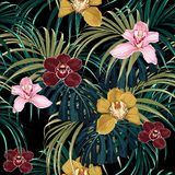Seamless pattern, pink burgundy yellow orchid flower and green exotic palm monster leaves. royalty free illustration