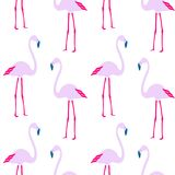 Seamless pattern pink exotic flamingo on white summer background. Wallpaper Stock Photography