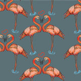 Seamless pattern pink flamingo on grey background Stock Photos