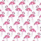 Seamless pattern with pink flamingo on a white background. Watercolor illustration. stock illustration