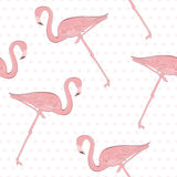 Seamless pattern with pink flamingos in the background of polka Stock Photo
