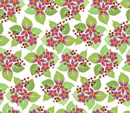 Seamless pattern with pink flowers Royalty Free Stock Image