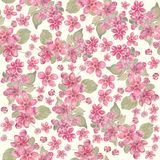 Seamless pattern of pink flowers royalty free stock image