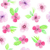 Seamless pattern with pink flowers and leaves Royalty Free Stock Photography