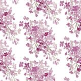 Seamless pattern. Pink flowers lilac. Vector background banner. Seamless pattern. Purple flowers lilac. Vector background Stock Image