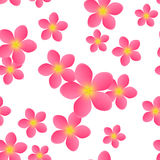 Seamless pattern with pink flowers Stock Image