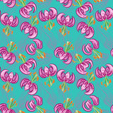 Seamless pattern with pink lily and feathers Stock Photos