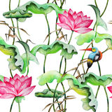Seamless pattern with pink lotuses and kingfisher. Royalty Free Stock Images