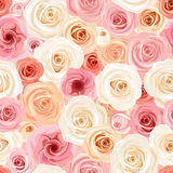 Seamless pattern with pink, orange and white roses. Vector illustration. Royalty Free Stock Photo
