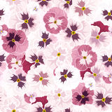 Seamless pattern with pink pansy flowers. Vector illustration. Royalty Free Stock Photography