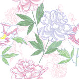 Seamless pattern  with pink peonies flowers Stock Photography