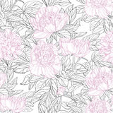 Seamless pattern of pink peonies graphics Stock Images
