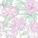 Seamless pattern of pink peonies graphics Stock Photo
