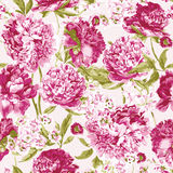 Seamless Pattern with Pink Peonies, Vector Stock Photography