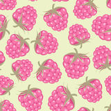 Seamless pattern with pink raspberry Stock Photo