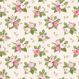 Seamless pattern with pink rose buds and leaves. Stock Image