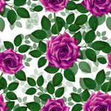 Seamless pattern with pink roses. Beautiful realistic flowers with leaves. Photorealixtic rose bud, clean vector high detailed stock images