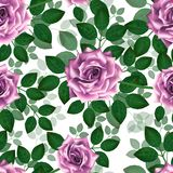 Seamless pattern with pink roses. Beautiful realistic flowers with leaves. Photorealixtic rose bud, clean vector high detailed royalty free stock images