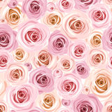 Seamless pattern with pink roses. Vector illustration. Stock Images