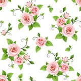 Seamless pattern with pink roses. Vector illustration. Royalty Free Stock Images