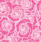 Seamless pattern of pink roses with white lines. Vector illustration Stock Photography