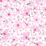 Seamless pattern of pink spring Sakura blossom. Seamless background pattern of pink Sakura blossom or Japanese flowering cherry symbolic of Spring in a random Royalty Free Stock Photography