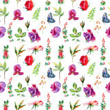 Seamless pattern with pink Sweet pea, Lathyrus odoratus, leaves. Royalty Free Stock Image