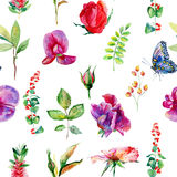 Seamless pattern with pink Sweet pea, Lathyrus odoratus, leaves. Stock Image