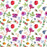 Seamless pattern with pink Sweet pea, Lathyrus odoratus, leaves. Royalty Free Stock Photos