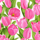 Seamless pattern of pink tulips Stock Photo