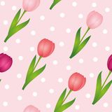 Seamless pattern pink tulips dotted spring design background vector illustration