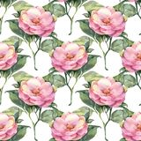 Seamless pattern with pink watercolor flowers. Hand drawn watercolor floral seamless pattern Stock Images