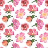 Seamless pattern of pink watercolor rose flowers Stock Photo