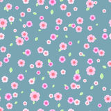 Seamless Pattern with Pink and White Flowers Royalty Free Stock Images