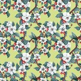 Seamless pattern with pink and white flowers apple and peach. Seamless pattern with watercolor apple flowers and leaves. Seamless pattern with pink and white stock illustration