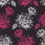 Seamless pattern with pink and white flowers on dark background Stock Image